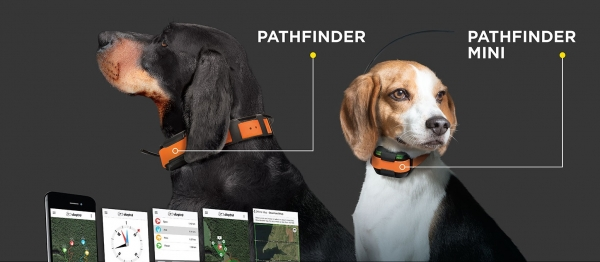 Dogtra GPS Pathfinder Mini